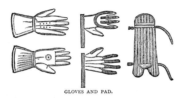 Cricket Gloves and Pads - 1890 Engraving