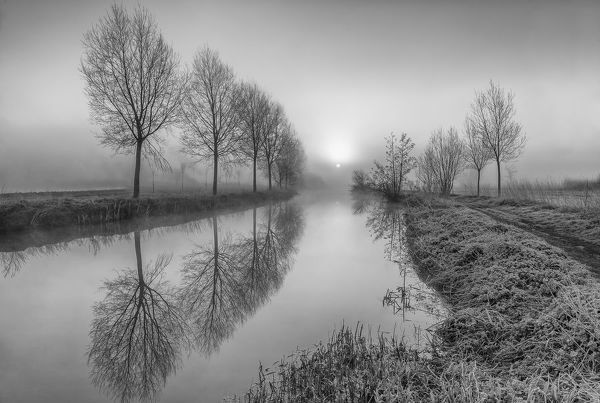 Boreham, Essex, UK. March 10, 2015.   A monochrome sunrise through the fog at the River Chelmer, Boreham, Essex. The river runs central in the image with trees lining either side