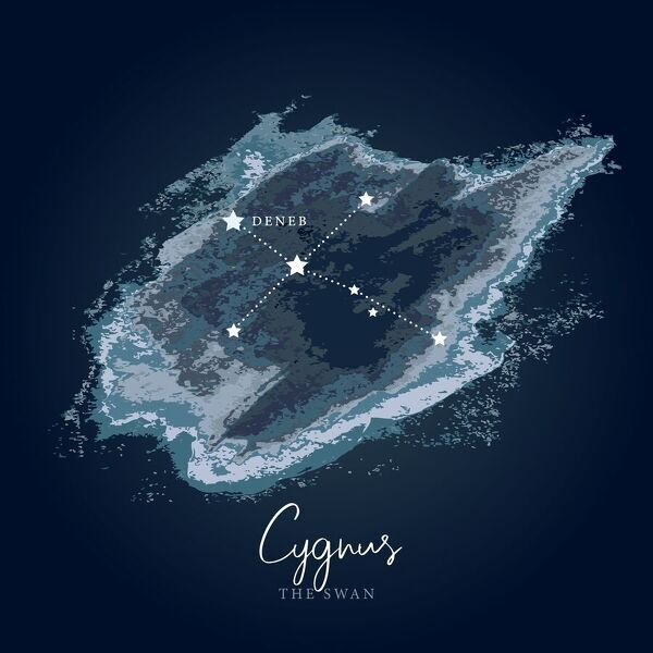 Simple, modern depiction of a celestial constellation on a navy backdrop. Cygnus is one of the most recognizable constellations of the northern summer and autumn, and it features a prominent asterism known as the Northern Cross