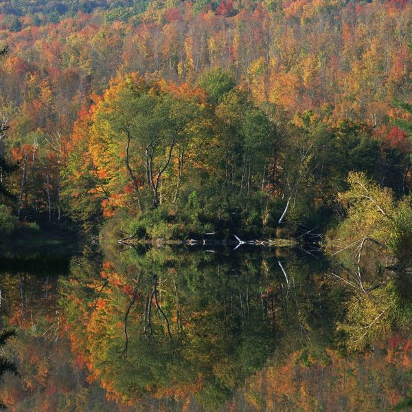 Autumn, Day, Lake, Multicolored, Nature, New Hampshire, Nobody, Peacefulness, Quiet