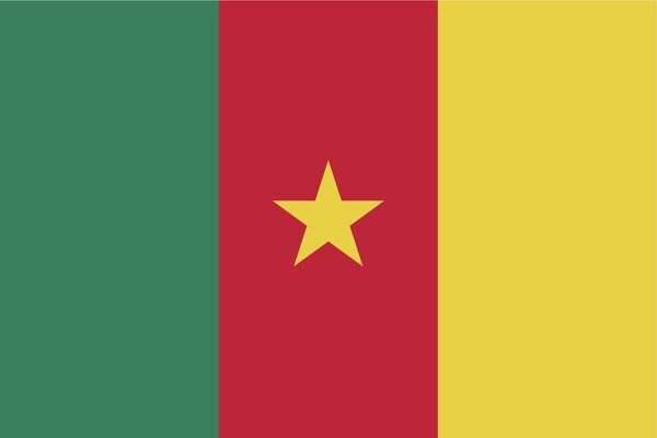 Flag of Cameroon. Proportion 2:3, Flag of Cameroon