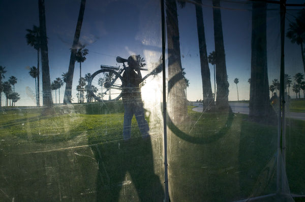 Window reflecting palm trees and cyclist carrying bicyle