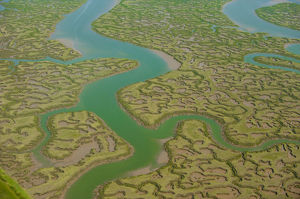 Aerial view of mud flats.