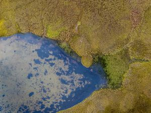 Aerial view-Water Creek with Tussocks or Hummocks, Iceland