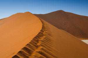 'Big Daddy' sand Dune, The Dead Vlei