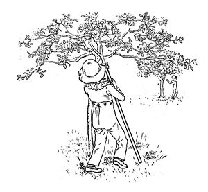 Antique children spelling book illustrations: Tree