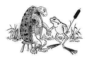 Antique children's book comic illustration: turtle and frog