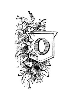 Antique children's book comic illustration: Ornate letter O