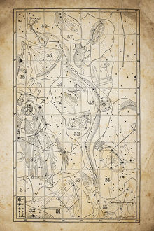 Antique illustration on yellow aged paper: zodiac astrology constellations (series 6)