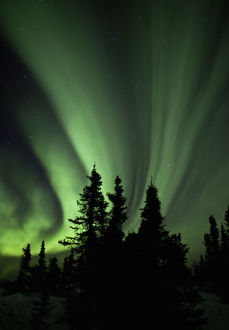 Aurora borealis, Fairbanks, Alaska