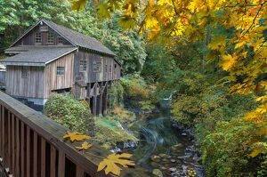 Autumn at Cedar Creek Grist Mill