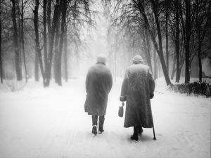 Rear view of two people walking in park at winter