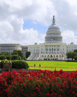 Capitol Building, Washington DC, United States