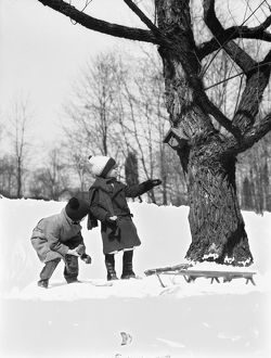 Two children pulling sled, looking up birdhouse in tree, winter.