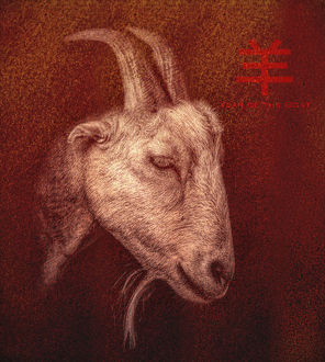Chinese New Year Goat Portrait