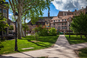travel imagery/travel photographer collections dado daniela travel photography/colmar old town park