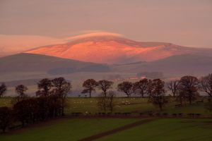 Early morning sun on The Cheviots