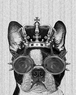 Hipster Boston Terrier Dog With Crown And Steampunk Goggles