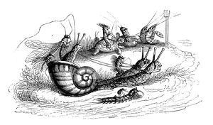Humanized animals illustrations: Riding snails