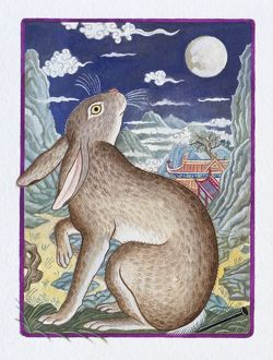 Illustration of Rabbit Looking at the Moon, representing Chinese Year Of The Rabbit