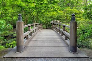 Japanese Garden Bridge