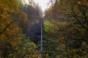 Latourell Falls in Autumn