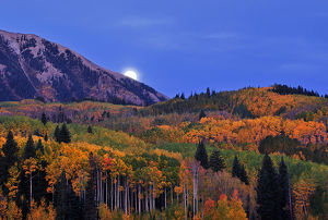 Moonset at Kebler Pass