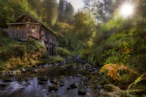 Morning Light by Cedar Creek Grist Mill