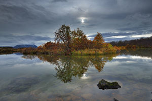 global landscape views/fred concha photography/myvtan lake autumn colours