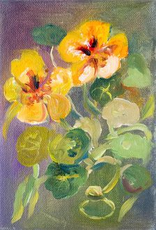 Nasturtium flowers oil painting