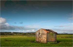 Old and abandoned farm hut in the rurals of King Island, Bass Strait, Tasmania, Australia.
