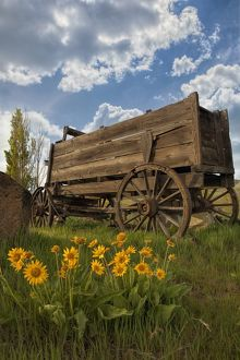 Old Wagon at Dalles Mountain Ranch