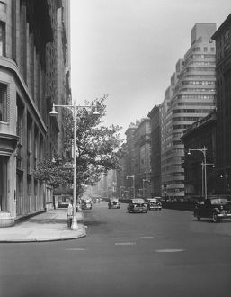 Park Avenue, New York City, (B&W)