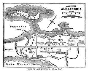maps/plan alexandria