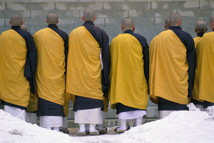 Rear View of a Group of Buddhist Monks