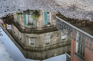 Reflections of New Orleans