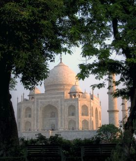 Taj Mahal behind trees at sunrise