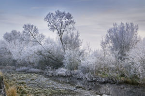 Cotswold Water Park In Winter; Thames Head, England