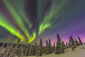 Winter Aurora display
